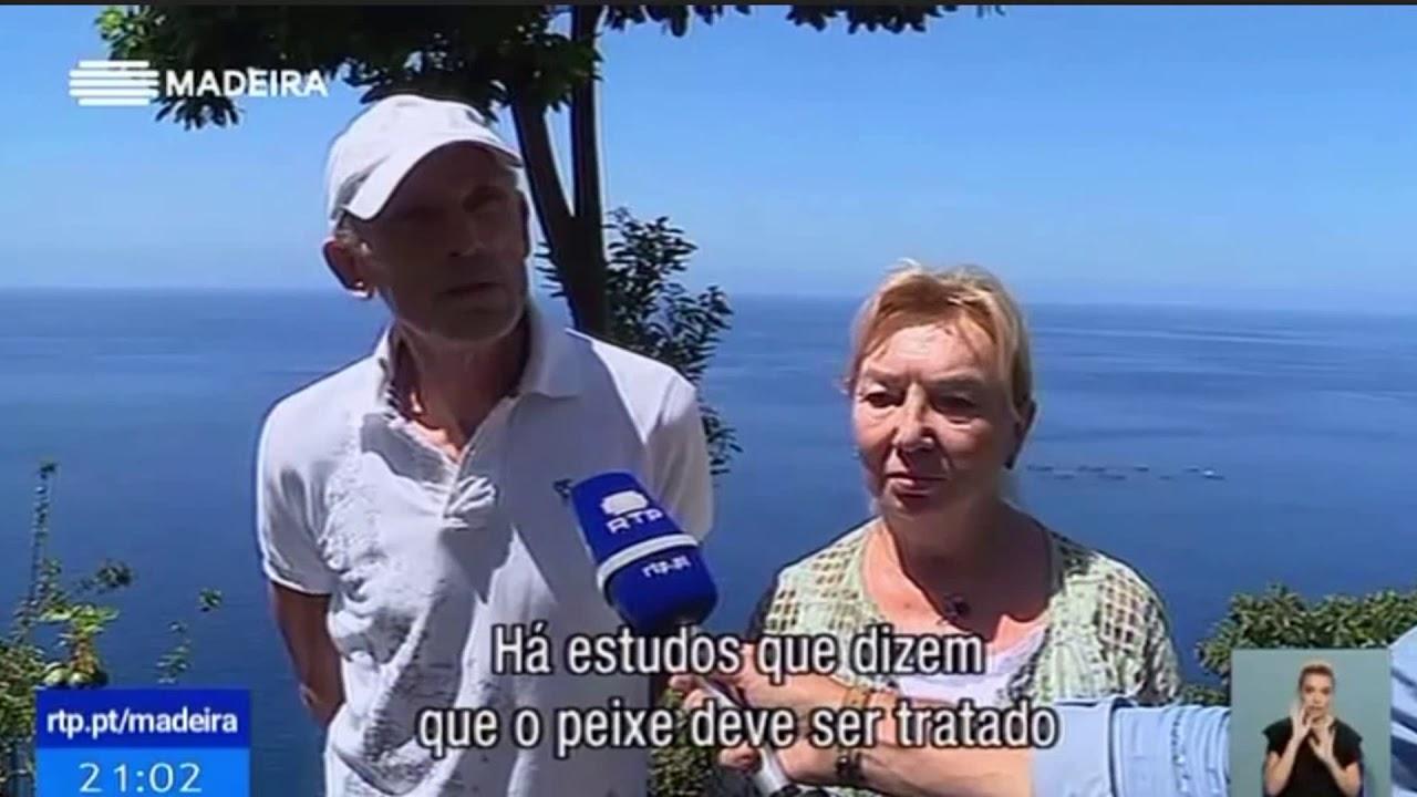 """Moradores da Calheta fazem """"petição"""" contra aumento da piscicultura   Telejornal RTP M"""